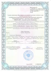 приложение к лиценз